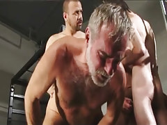 Hirsute faggot men fuck silver daddy in gangbang