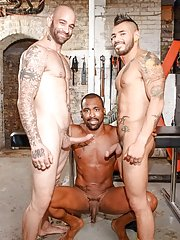 Sam Swift::Draven Torres::Drew Vergas - in Gay Porn Fotos