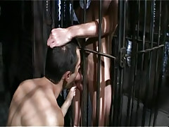 Gay boy sucks poor lad in cage
