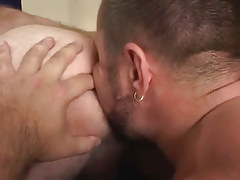 Bear gay licks out hairy males hole