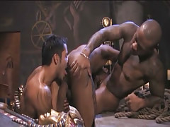 Interracial gays suck cocks and lick holes in archeological dig