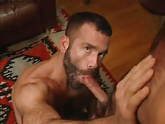 Hairy gay throats hard cock in house hunting
