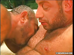 Muscle bears kissing each other