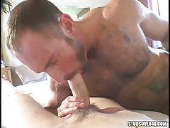 Mature hairy gay sucking cute lad