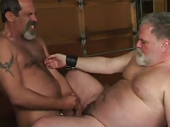 Mature hairy gay cums on old chubby man