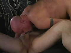 Bear mature gay sucking tasty cock