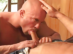 Sexy gay sucking sweet cock